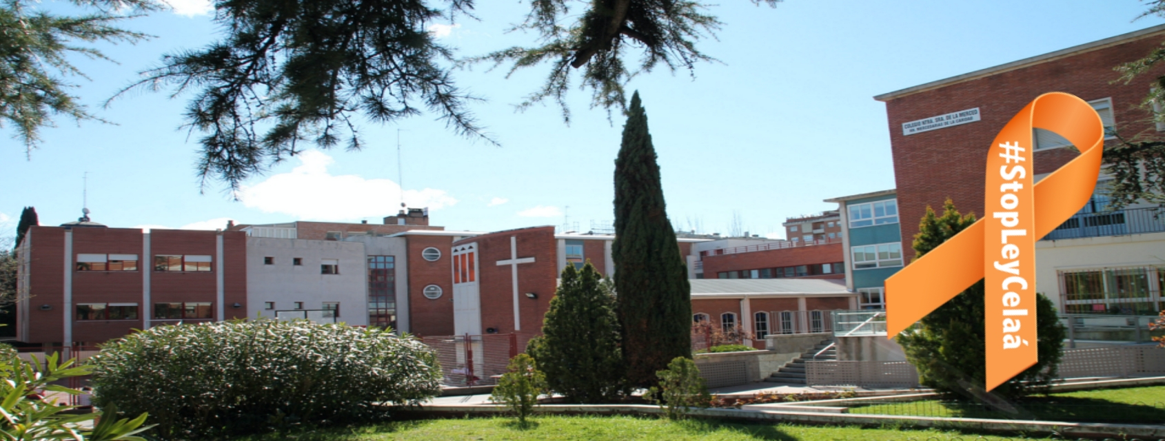 colegio_madrid_lazo2.jpg